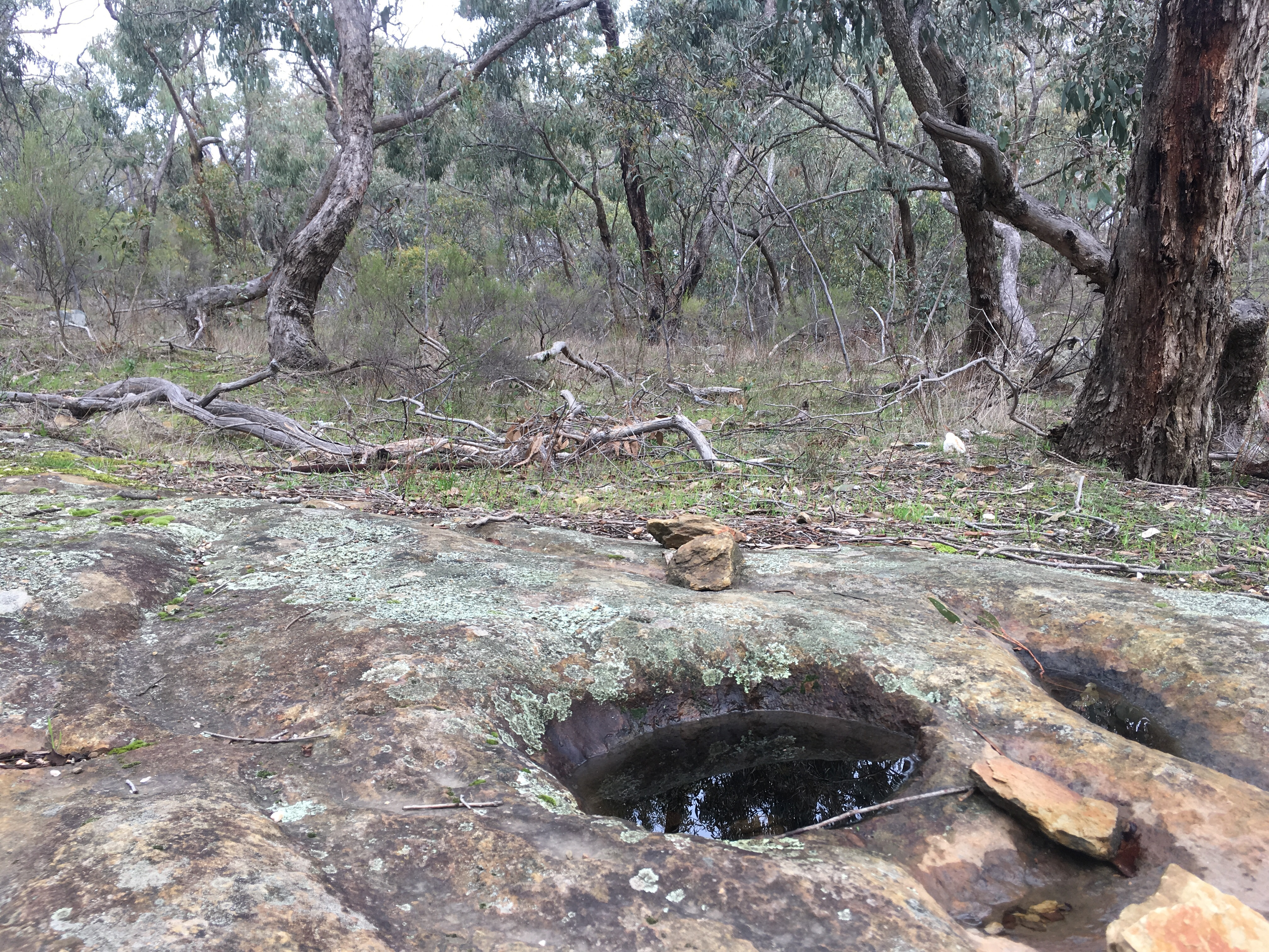Aboriginal rock wells at Eureka Reef