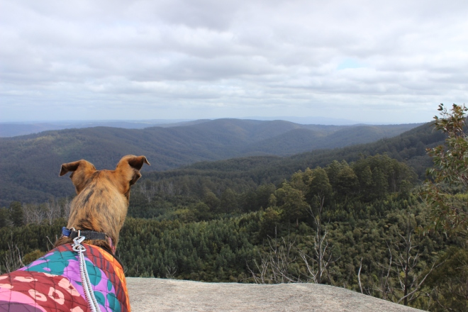 View from Seven Acre Rock lookout