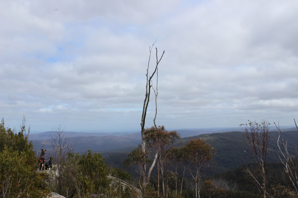 View from Seven Acre Rock